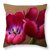 Pink Tulip Pair Throw Pillow by Deborah Benoit