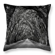 Plantation Oak Alley Throw Pillow by Perry Webster