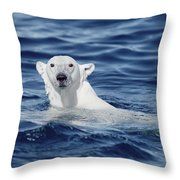 Polar Bear Swimming Baffin Island Canada Throw Pillow by Flip Nicklin