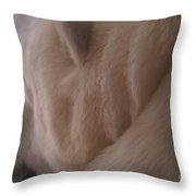 Polar Dream Throw Pillow by Linda Shafer