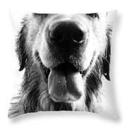 Portrait of a Happy Dog Throw Pillow by Osvaldo Hamer
