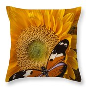 Pretty Butterfly On Sunflowers Throw Pillow by Garry Gay