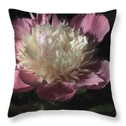Pretty Peony Throw Pillow by Donna Kennedy