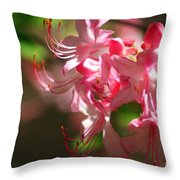 Pretty Pink Throw Pillow by Marty Koch