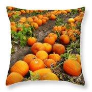 Pumpkin Patch Throw Pillow by Carol Groenen