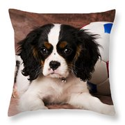 Puppy With Ball Throw Pillow by Garry Gay
