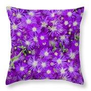 Purple Flowers Throw Pillow by Frank Tschakert