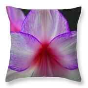 Purple Haze Throw Pillow by Donna Shahan