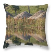 Pyrimids By The Lakeside Cache Throw Pillow by Rob Hans