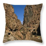 Rafting On The Arkansas River Throw Pillow by Richard Nowitz