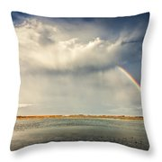 Rainbow Throw Pillow by Evgeni Dinev