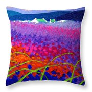 Rainbow Meadow Throw Pillow by John  Nolan