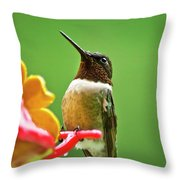Rainy Day Hummingbird Throw Pillow by Christina Rollo