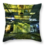 Raise the Roof Throw Pillow by Evelina Kremsdorf