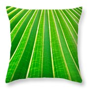 Reaching Out Throw Pillow by Holly Kempe