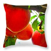 Ready To Pick Throw Pillow by Gwyn Newcombe