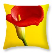 Red Calla Lilly  Throw Pillow by Garry Gay