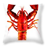 Red Lobster - Full Body Seafood Art Throw Pillow by Sharon Cummings