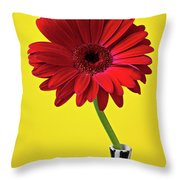 Red Mum Against Yellow Background Throw Pillow by Garry Gay