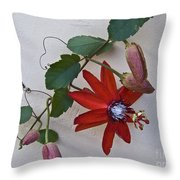 Red On White Throw Pillow by Heiko Koehrer-Wagner