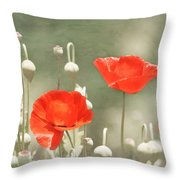 Red Poppies Throw Pillow by Kim Hojnacki