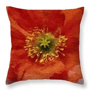 Red Poppy Throw Pillow by Linda Woods