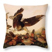 Red Shouldered Hawk Attacking Bobwhite Partridge Throw Pillow by John James Audubon