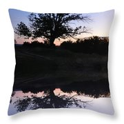 Reflecting Tree Throw Pillow by Bill Cannon