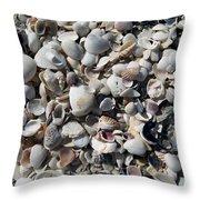 Remnants Throw Pillow by Terri Winkler