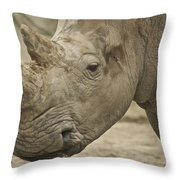 Rhino Throw Pillow by Michael Peychich