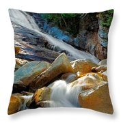 Ripley Falls Cascading Light Throw Pillow by Shelle Ettelson