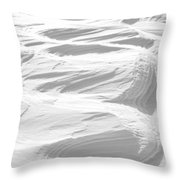 Ripples Throw Pillow by Michael Peychich