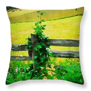 Roadside Beauty Throw Pillow by Darren Fisher