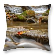 Roaring Fork Stream Great Smoky Mountains Throw Pillow by Steve Gadomski