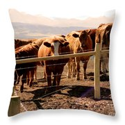 Rockies Cattle Country Throw Pillow by Al Bourassa