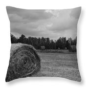 Rolls of Hay Throw Pillow by M J Glisson