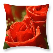 Romance Throw Pillow by Cheryl Young