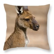 Roo Portrait Throw Pillow by Mike  Dawson