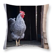 Rooster With Attitude Throw Pillow by Douglas Barnett