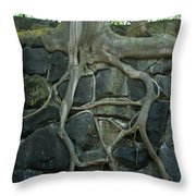 Roots And Rocks Throw Pillow by Douglas Barnett