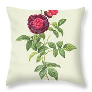 Rosa Gallica Gueriniana Throw Pillow by Pierre Joseph Redoute