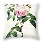 Rosa Indica Fragrans Throw Pillow by Pierre Joseph Redoute