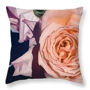 Rose Splendour Throw Pillow by Kerryn Madsen-Pietsch