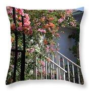 Roses In Winter Throw Pillow by Susanne Van Hulst