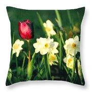 Royal Spring Throw Pillow by Steve Karol