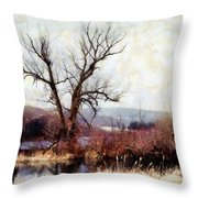 Rustic Reflections Throw Pillow by Janine Riley