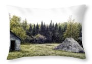 Rustic Remnants Throw Pillow by Richard Bean