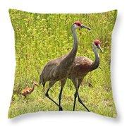 Sandhill Crane Family Throw Pillow by Carol Groenen