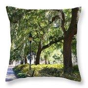 Savannah Benches Throw Pillow by Carol Groenen