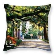 Savannah Park Sidewalk Throw Pillow by Carol Groenen